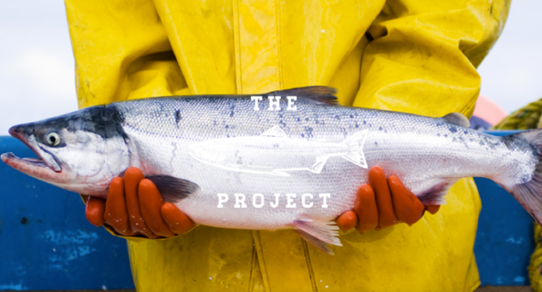 Courtesy of The Salmon Project
