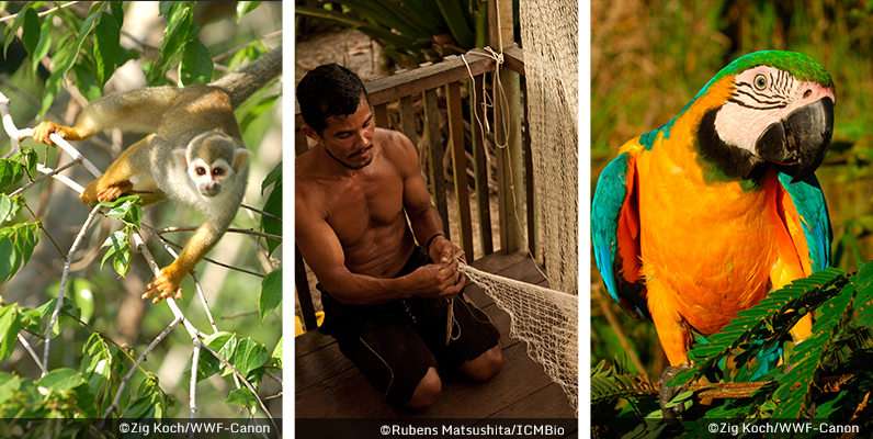 ARPA for Life - photos courtesy of WWF