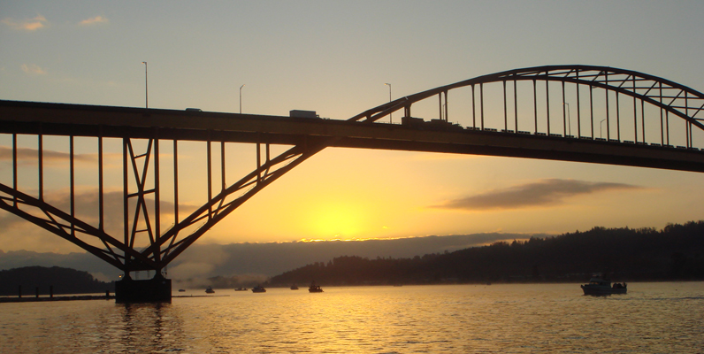 Courtesy of Watershed Watch - Chum salmon fishing under the old Port Mann Bridge