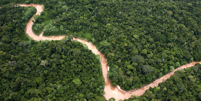 Courtesy of Thomas Muller and The Nature Conservancy - Sierra del Divisor, Peru