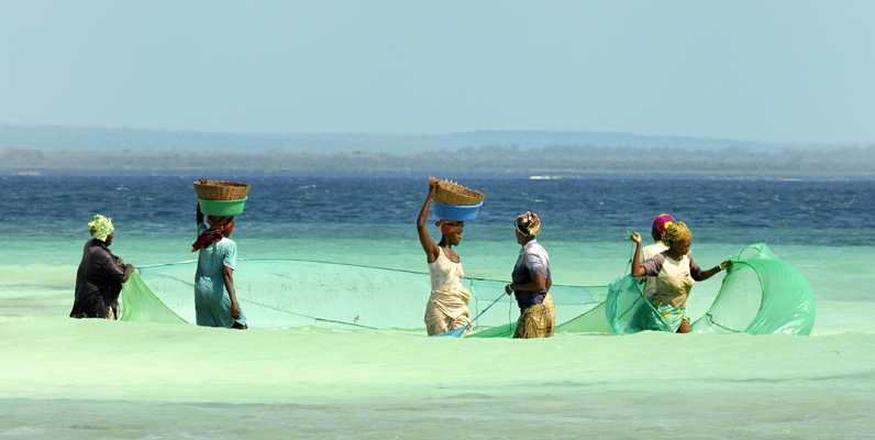 Courtesy of Michael Kock/Wildlife Conservation Society - Muslim Women Fishing in Mozambique