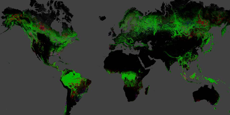 Courtesy of Hansen, Potapov, Moore, Hancher, et al., 2013 - Global forest change map