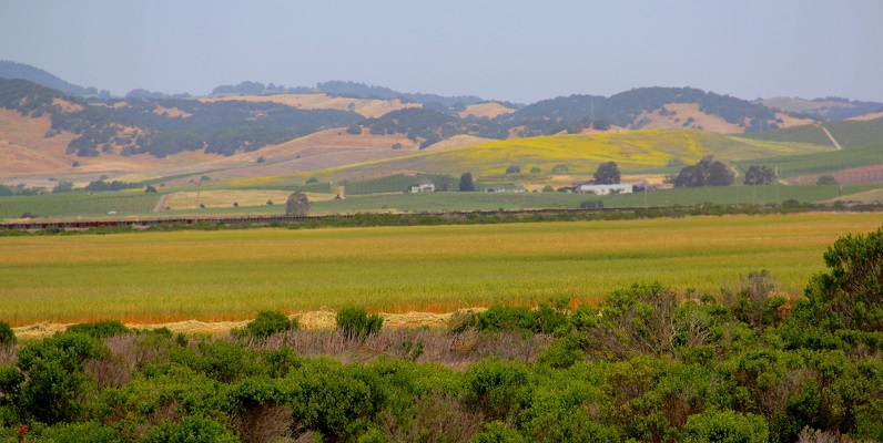 Courtesy of Corby Hines and the Sonoma Land Trust