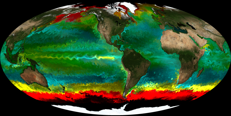 Courtesy of Mick Follows, simulated phytoplankton biogeography from an ocean model