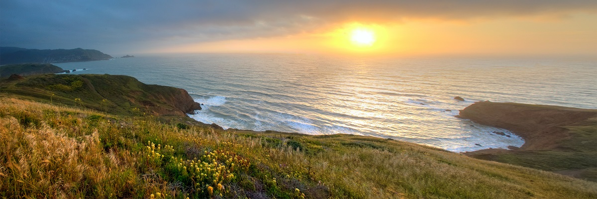 Courtesy of Mason Cumming, Parks Conservancy- Mori Point